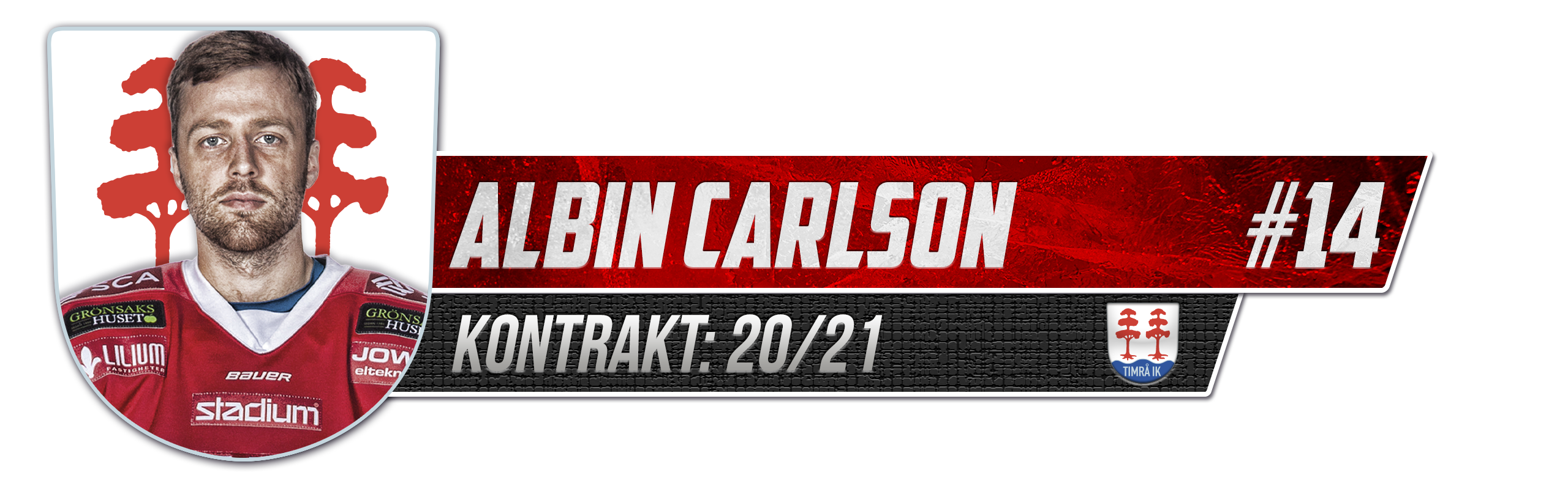 Albin Carlson