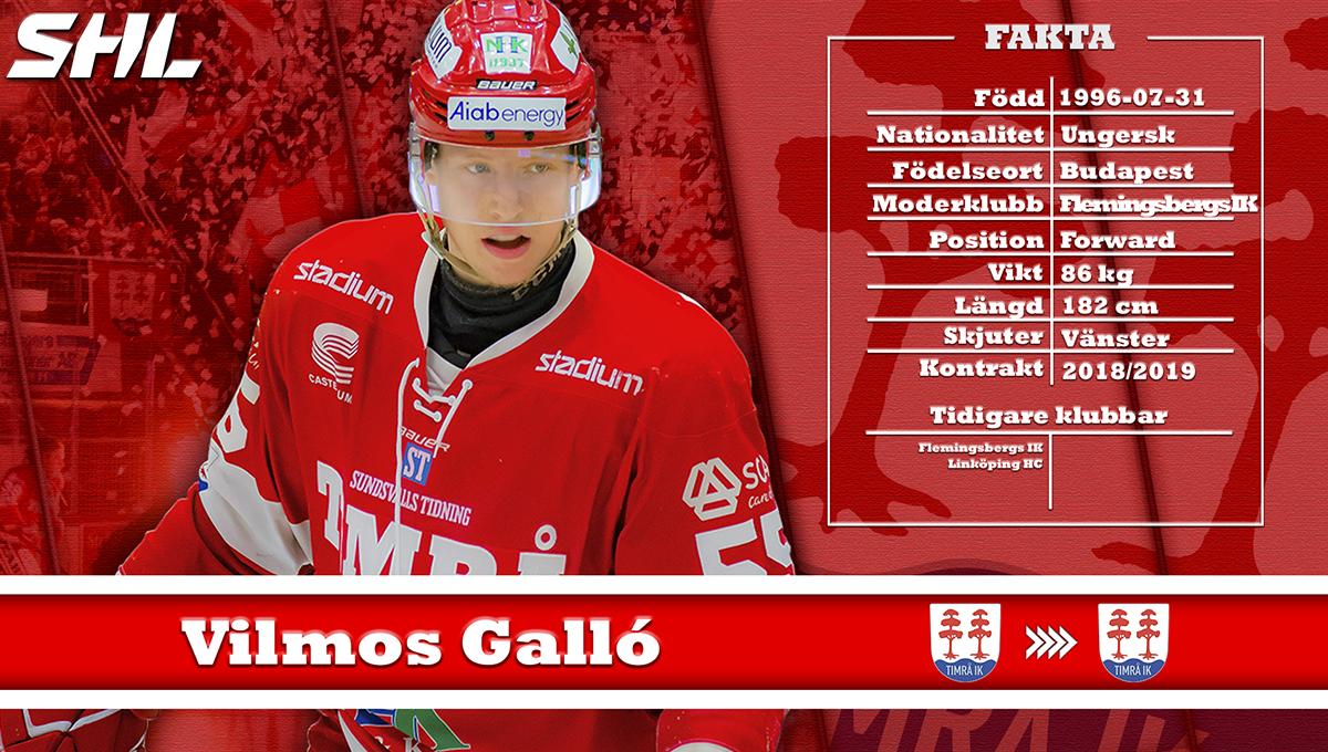 Vilmos Gallo