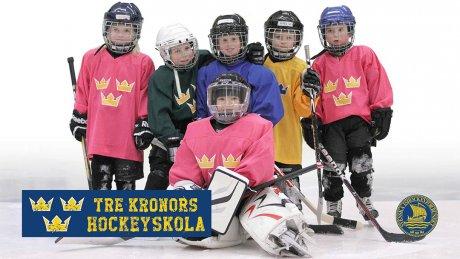https://www.ishockeyskolan.se/ishockeyskolan17@nyanmalan2.html/1402849806