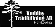 Kuddby