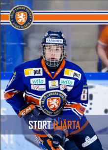 https://cdn.shl.se/files/VLH/Hockeygymnasie.pdf