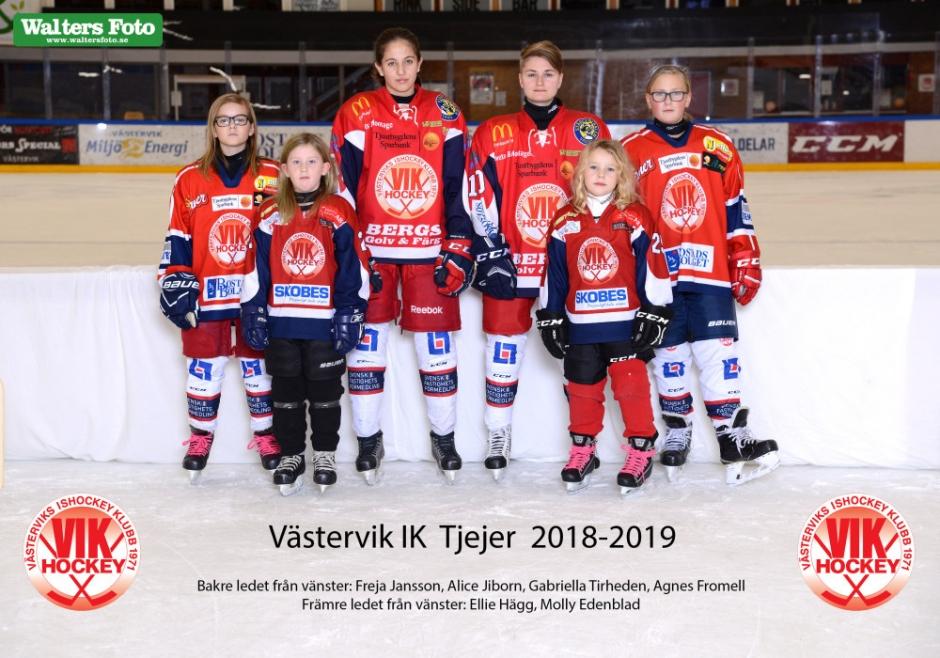Tjejhockey 2018-2019