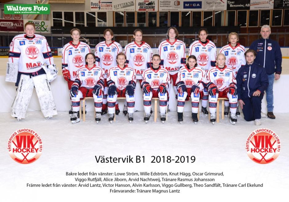 VIK J20 2018-2019