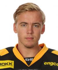 Andreas Wingerli