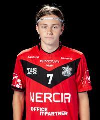 Emil Ruud